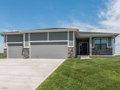 Ankeny Single Family Home For Sale: 518 NE 55th Street