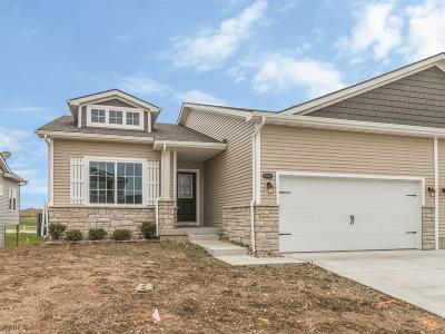 West Des Moines Condo/Townhouse For Sale: 8969 Jean Louise Drive
