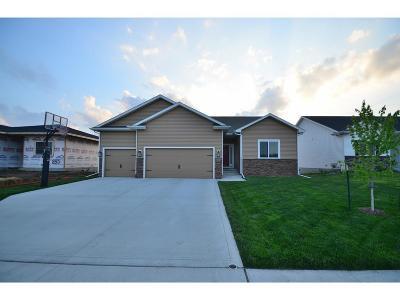 Waukee Single Family Home For Sale: 845 NE Addison Drive