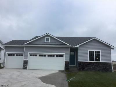 Granger Single Family Home For Sale: 2529 Park Ridge Drive