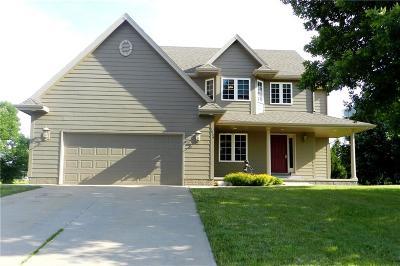 Polk City Single Family Home For Sale: 1809 W Cheyenne Court