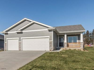 West Des Moines Single Family Home For Sale: 8925 Cody Drive