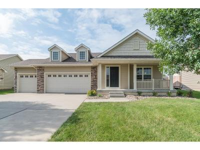 Urbandale Single Family Home For Sale: 13012 Tanglewood Drive