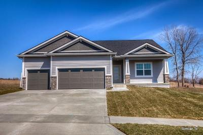 West Des Moines Single Family Home For Sale: 10974 Brookdale Drive