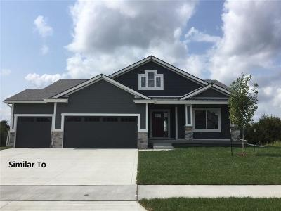 Ankeny Single Family Home For Sale: 2508 NW 40th Street