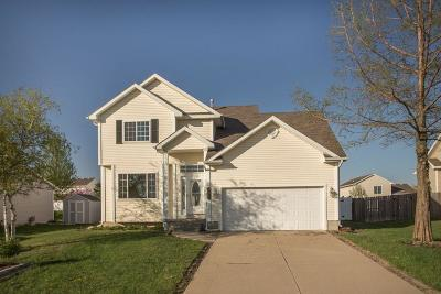 Ankeny Single Family Home For Sale: 3021 SW Brookeline Drive