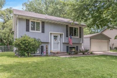 Ankeny Single Family Home For Sale: 505 NW Scott Street