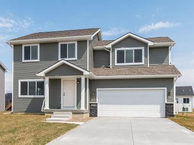 Ankeny Single Family Home For Sale: 3509 NE Winding Trail Drive