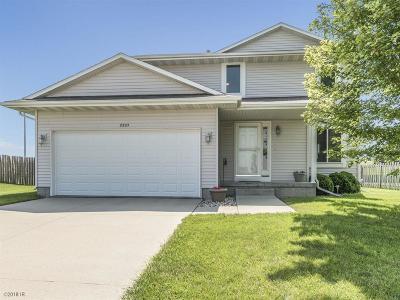 Granger Single Family Home For Sale: 2205 Vista View Drive