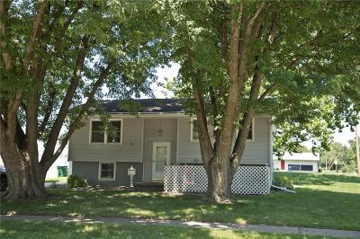 Altoona Single Family Home For Sale: 115 9th Street SE