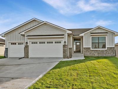 Ankeny Single Family Home For Sale: 1617 NE Hillside Court