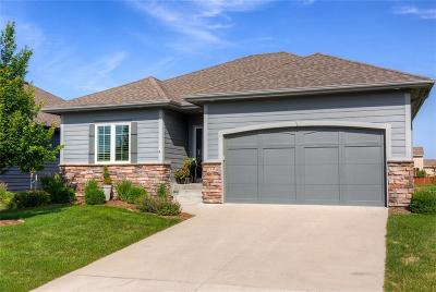 West Des Moines Single Family Home For Sale: 9158 Canyon Street