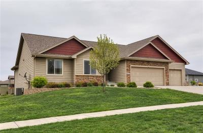 Ankeny Single Family Home For Sale: 4312 NE Briarwood Drive