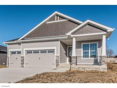 West Des Moines Single Family Home For Sale: 6141 Aspen Drive