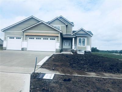 West Des Moines Single Family Home For Sale: 10057 Crownland Place