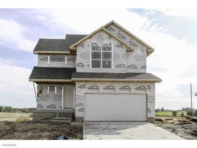 Bondurant Single Family Home For Sale: 1005 37th Street SW
