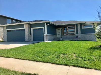 Waukee Single Family Home For Sale: 310 Dunham Drive