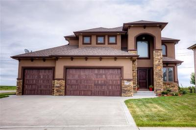 Urbandale Single Family Home For Sale: 4819 143rd Street