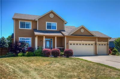 Altoona Single Family Home For Sale: 106 Dooley Court SW