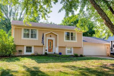 Indianola Single Family Home For Sale: 1503 W Clinton Avenue