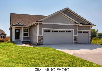 Ankeny Single Family Home For Sale: 4207 NW Northwood Drive