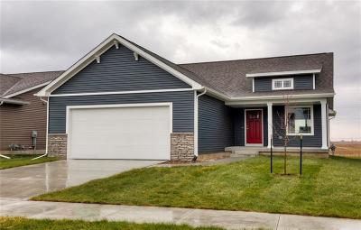 Ankeny Single Family Home For Sale: 4212 NW Northwood Drive