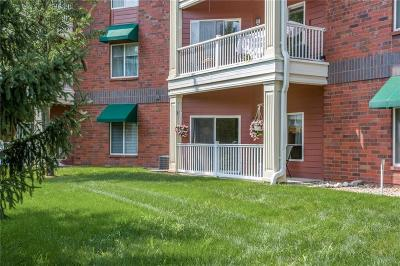 Urbandale Condo/Townhouse For Sale: 2727 82nd Place #110