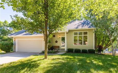 Des Moines Single Family Home For Sale: 3601 Thornton Avenue