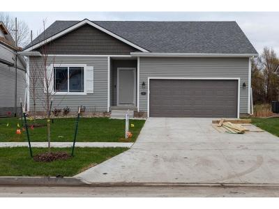 Des Moines Single Family Home For Sale: 4348 E 48th Street