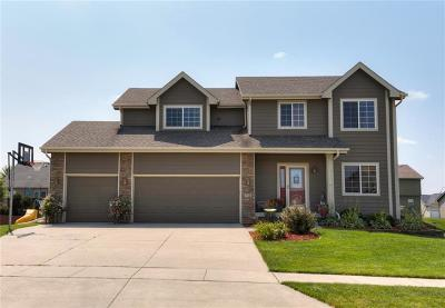 Ankeny Single Family Home For Sale: 711 NE 46th Court