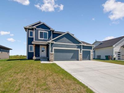 Altoona Single Family Home For Sale: 317 31st Street SE