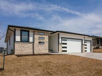 Van Meter Single Family Home For Sale: 5235 Katelyn Avenue