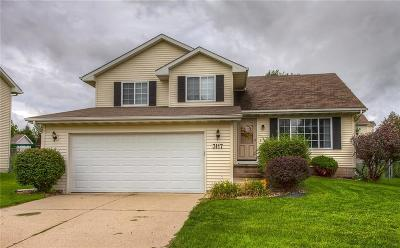 Ankeny Single Family Home For Sale: 3117 SW Townpark Drive