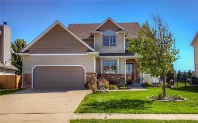 Waukee Single Family Home For Sale: 645 SE Cardinal Lane