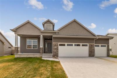 West Des Moines Single Family Home For Sale: 9688 Alderwood Drive