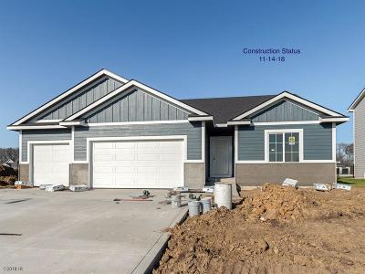 West Des Moines Single Family Home For Sale: 10971 Westport Drive