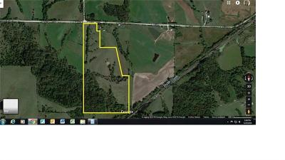 Residential Lots & Land For Sale: 00 480th Lane