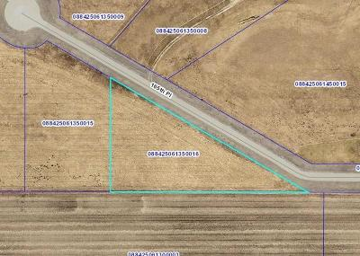 Boone Residential Lots & Land For Sale: 1860 165th Place
