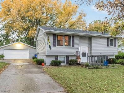 Van Meter Single Family Home For Sale: 115 Van Buren Drive