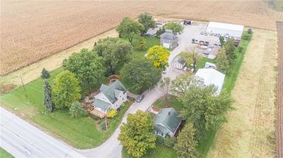 Story County Commercial For Sale: 31295 510 Avenue