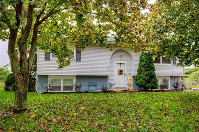 Norwalk Single Family Home For Sale: 4905 Wakonda Drive