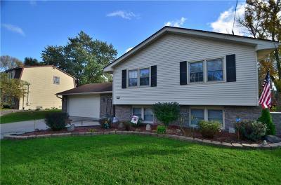 Des Moines Single Family Home For Sale: 3224 Summit Vista Drive