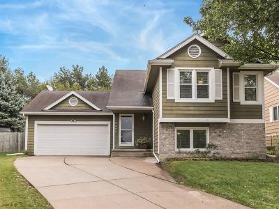 West Des Moines Single Family Home For Sale: 5301 Pommel Place