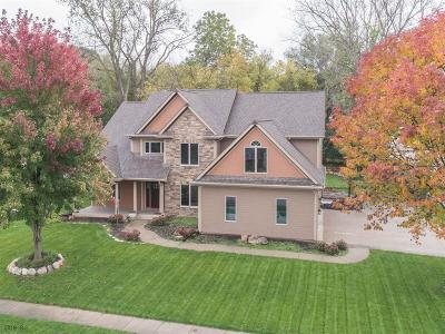 Urbandale Single Family Home For Sale: 4201 92nd Court