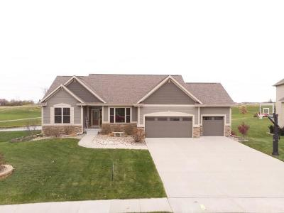 Ankeny Single Family Home For Sale: 4707 NE Seneca Drive