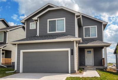 Grimes Single Family Home For Sale: 1200 NE 21st Street