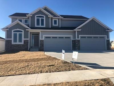 Ankeny Single Family Home For Sale: 1620 NE Meadow Court