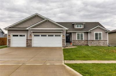 Ankeny Single Family Home For Sale: 2009 NW Woodbury Drive