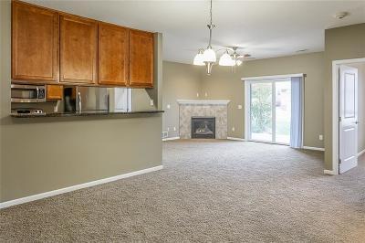 West Des Moines Condo/Townhouse For Sale: 6350 Coachlight Drive #3102