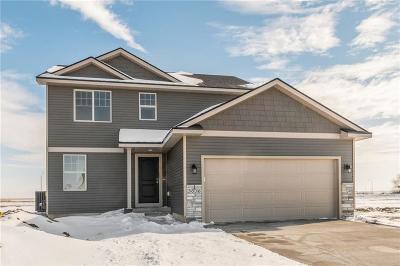 Ankeny Single Family Home For Sale: 3636 NE Winding Trail Drive